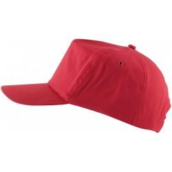 SAPCA LION RED